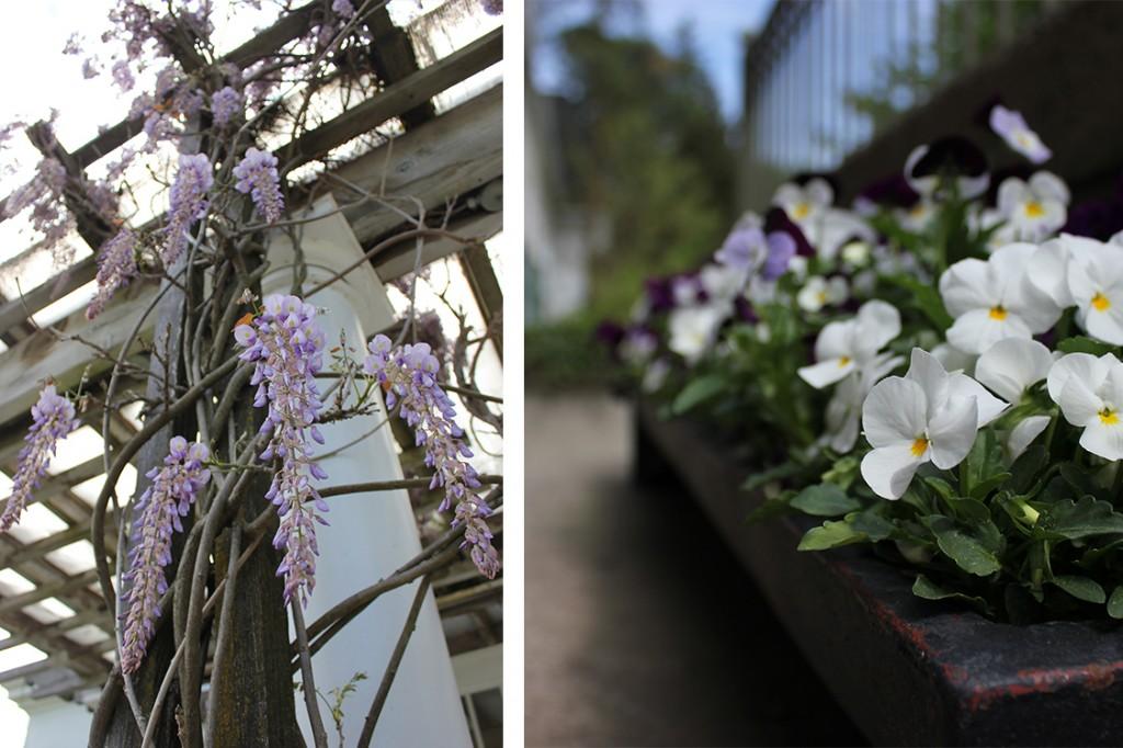 Langdon Hall Flowers