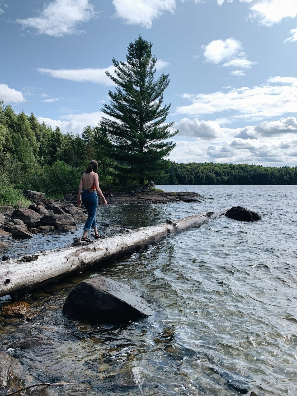 Style Bee - Camping - Algonquin 2019